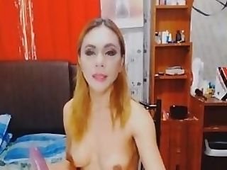 Hot Lovely Shemale Inserts Fake Penis In Her Culo